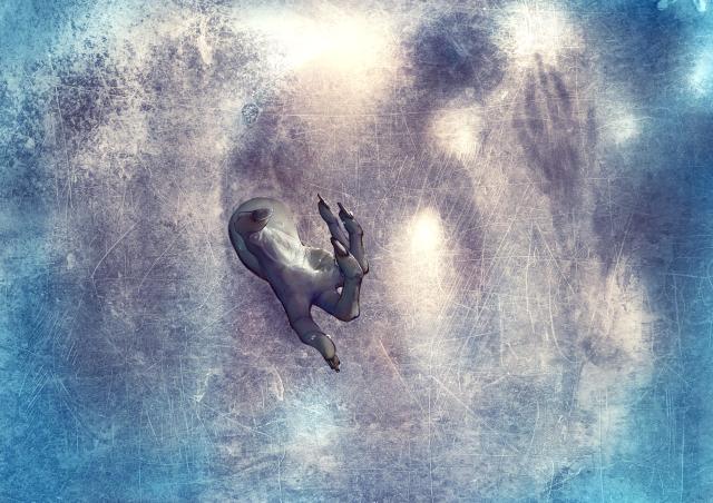 Ice_Zombie_Wall